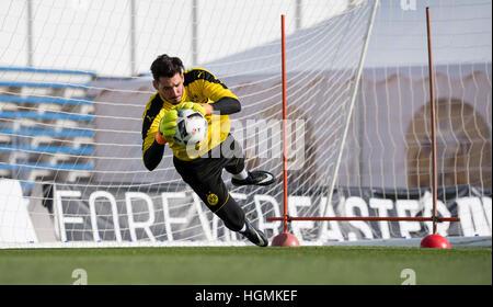 Marbella, Spanien. 11. Januar 2017. Dortmund-Torhüter Roman Buerki training bei Borussia Dortmund Trainingslager - Stockfoto