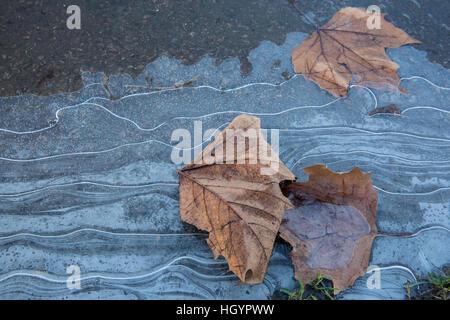 Windsor, UK. 13. Januar 2017. Muster im Eis in Windsor in Berkshire. Bildnachweis: Mark Kerrison/Alamy Live-Nachrichten - Stockfoto