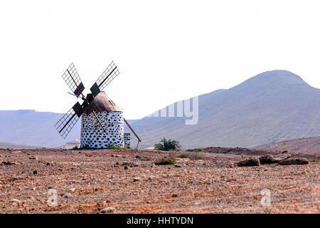 Windmühle, Villaverde, Corralejo, Fuerteventura, Kanarische Inseln, Spanien - Stockfoto