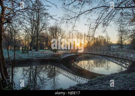 Morden Hall Park, London, UK. 21. Januar 2017. Nebel steigt vom Fluss Wandle beim Sonnenaufgang auf frostigen Boden - Stockfoto