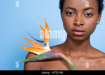 Frau mit Paradiesvogel Blume - Stockfoto