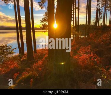 Sonnenuntergang am Kielder Wasser und Wald, Northumberland Park, England - Stockfoto