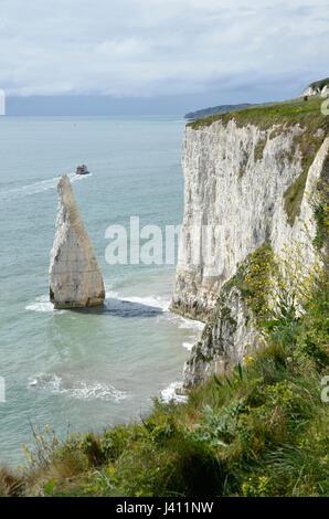 Die Pinnacles, eine Reihe von Kreide Felsnadeln vor der Küste von Dorset am Studland - Stockfoto