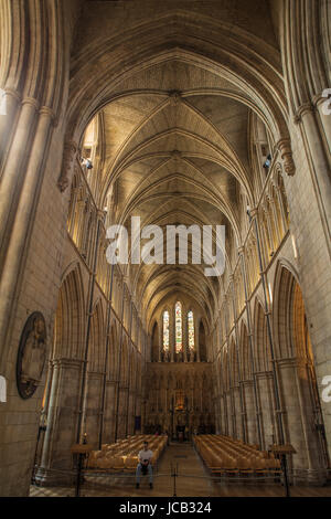 Southwark Cathedral gewölbte Decke - Stockfoto