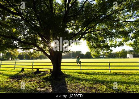 Ein junges Mädchen sitzt auf einem Zaun Uhren den Sonnenaufgang an einem lebendigen Frühlingsmorgen im Land Australien. - Stockfoto