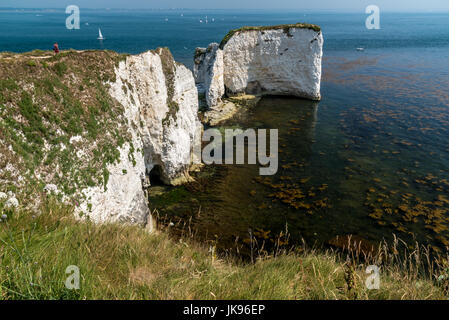 Old Harry Rocks, Handfast Punkt Studland Bay - Stockfoto