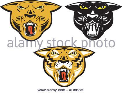 Ilustración de grandes felinos Pantera tigre cabeza mirando hacia la ...