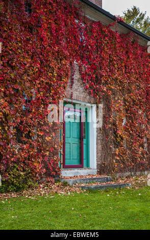 couleur d 39 automne vigne sur cl ture de jardin banque d 39 images photo stock 6618429 alamy. Black Bedroom Furniture Sets. Home Design Ideas