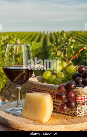 libre de grappes de raisin rouge dans le vignoble banque d. Black Bedroom Furniture Sets. Home Design Ideas